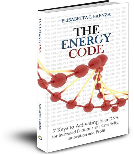 The Energy Code Preview - ebook