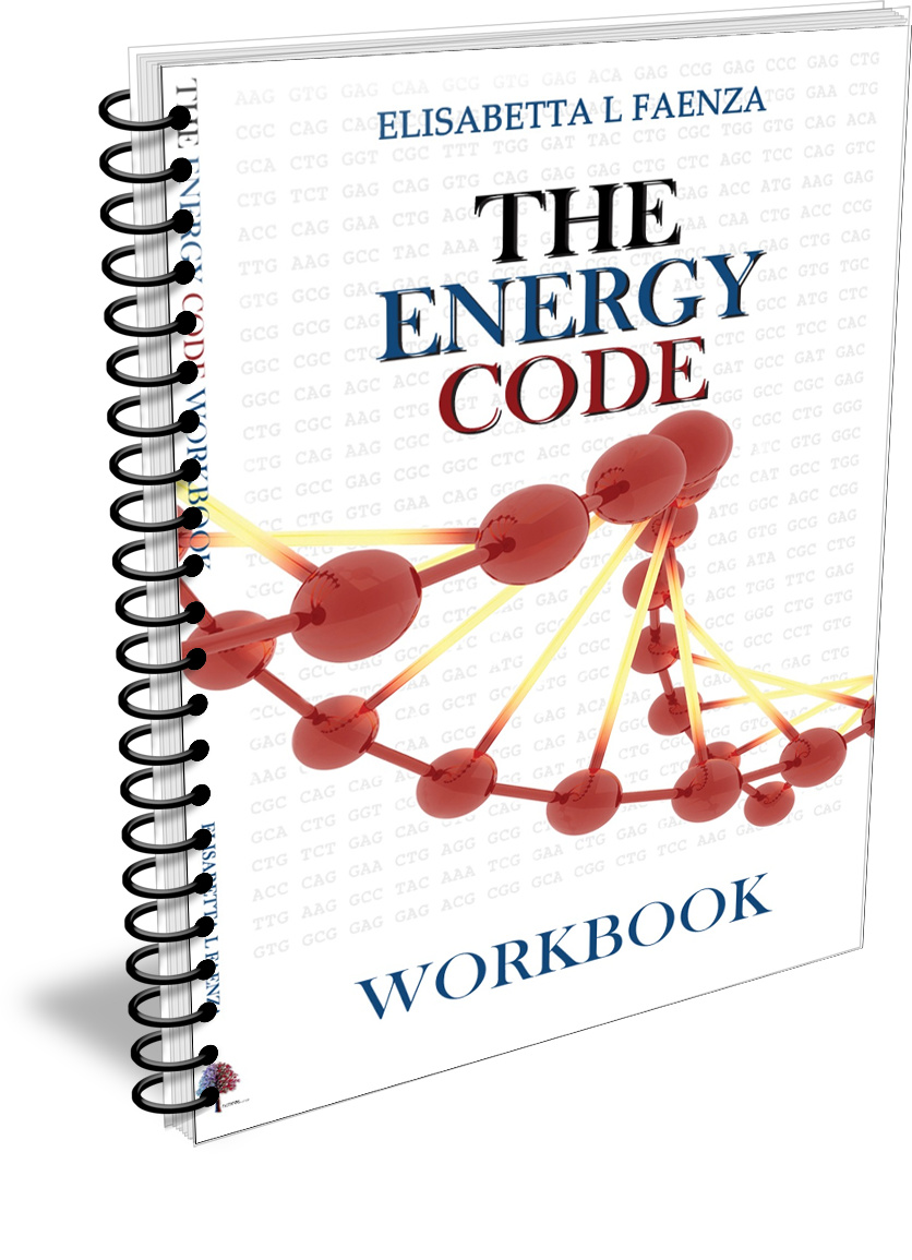 The Energy Code Workbook - ebook