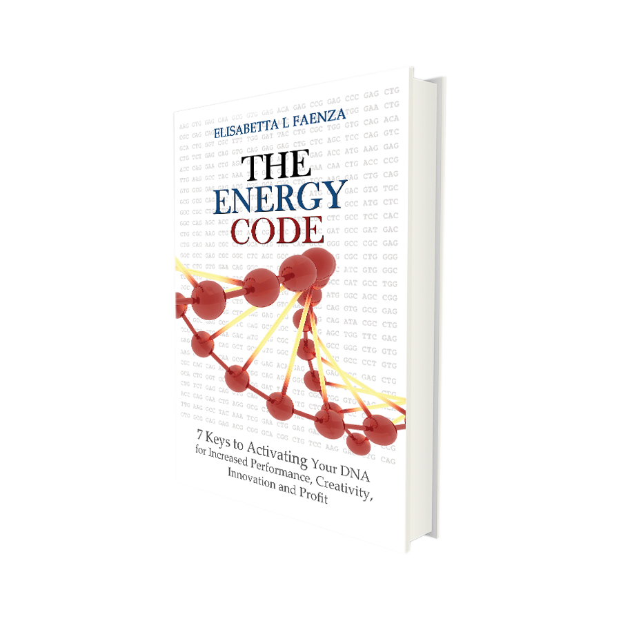 the energy code by elisabetta l faenza book cover